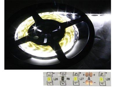LED strip Warm Wit, 12v, 60 LED,s 5mtr.